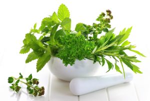 herbalist course - Diploma  of Botano-Therapy (DBTh